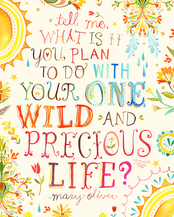 Tell-me-what-is-it-you-plan-to-do-with-your-one-wild-and-precious-life.jpg